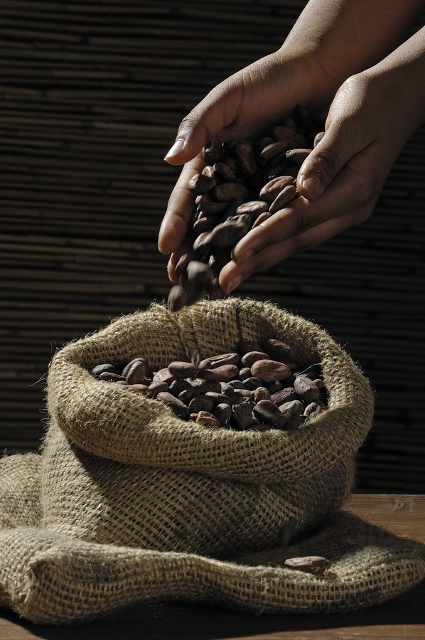 caribbean chocolate